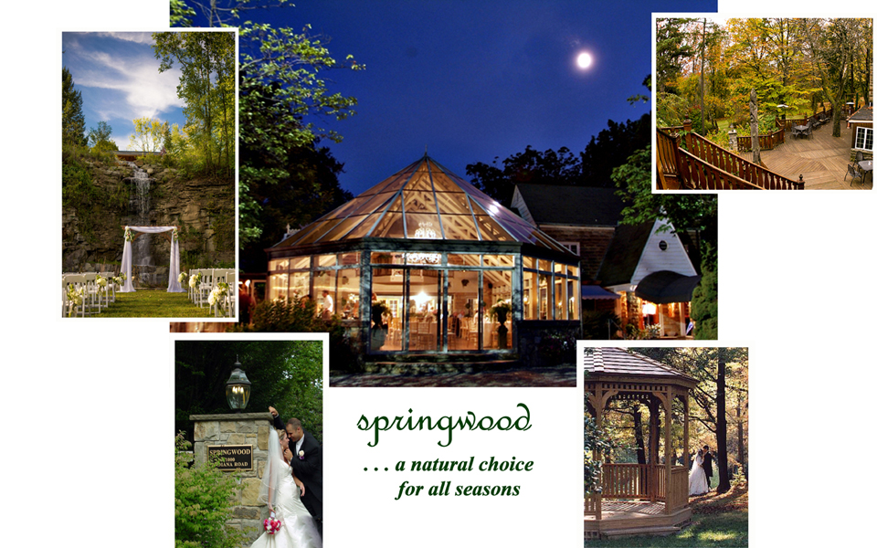 Springwood Conference Center Pittsburgh Wedding Receptions